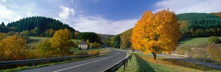 Country Road near Heidelberg Germany