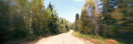 Forest Road with Blurred Motion Laurentides Quebe