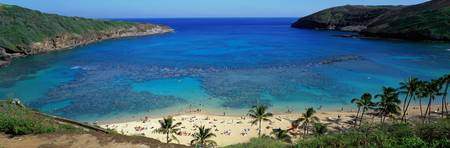 Beach at Hanauma Bay Oahu Hawaii