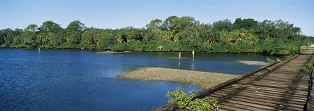 Old railroad trestle across a shallow bay at low