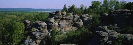 Rock formations in a forest