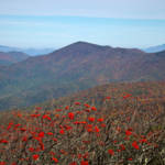 """""""View from Craggy Dome Mountain"""" by ValeriesGallery"""
