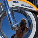 """""""Harley"""" by ginaspics"""