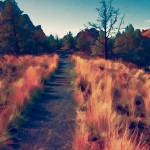 """Trail at Smith Rock"" by bonniebruno"