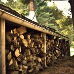 """""""Woodpile (1)"""" by JZaringPhoto"""