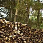 """Woodpile (2)"" by JZaringPhoto"
