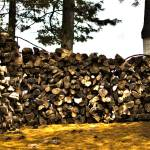 """Woodpile (3)"" by JZaringPhoto"
