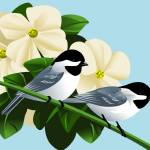 """Black Capped Chickadees With Dogwood"" by waterart"