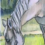 """horsegazer"" by Lelia"