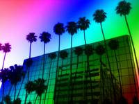 Hollywood Rainbow