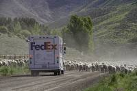 FedEx World On Time