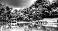 Botanic Garden Singapore, Black and White Series