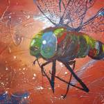 """""""Dragonfly"""" by gallerymay"""