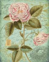 victorian-rose-print-VER2