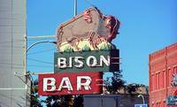 Miles City, Montana - Bison Bar