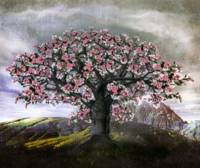 Lonely Apple Blossom Tree