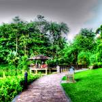 """Botanic Garden Singapore Series"" by sghomedeco"