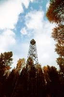 a tower in the autumn
