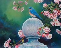 Blue Bird In Spring