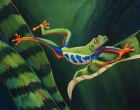 Red Eyed Tree Frog Leaping