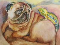When Pug Met Chameleon