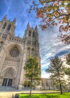 National Cathedral Autumn
