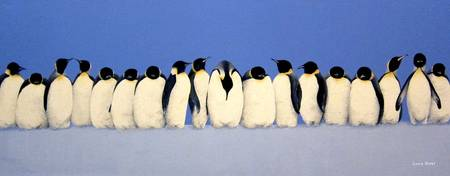 Huddling Penguins