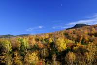 Loon Mountain Foliage