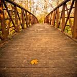 """""""Autumn Bridge"""" by Irmazart"""