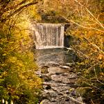 """Autumn Falls"" by Irmazart"