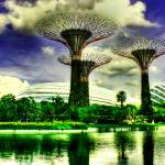 """Garden by the Bay, Singapore"" by sghomedeco"