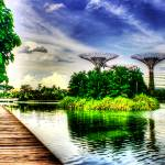 """Garden by the Bay, Singapore Garden Series"" by sghomedeco"