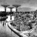 """Garden by the Bay, Garden Singapore Series"" by sghomedeco"