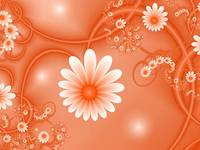 Fractal White Fantasy Flowers love Orange