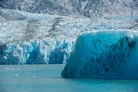 Dawes Glacier and Iceberg