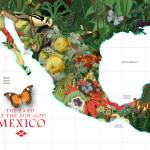 """Mexico Map of Plants and Flowers"" by redssr03"