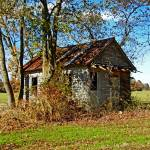 """Abandoned Cabin Bishopville"" by travel"