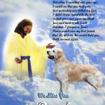 """""""Jesus and Golden Retriever copy"""" by heavenlyimages"""
