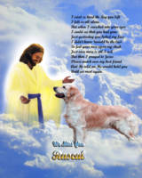stretched-Jesus and Golden Retriever copy
