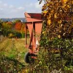 """""""Autumn Harvest"""" by LukeMoore"""