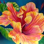 """""""""""Hibiscus"""""""" by susandrobinson"""
