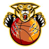 Tiger Basketball Ball Claws