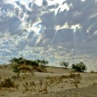 Morning over the Dunes Art Prints & Posters by Allen Sheffield
