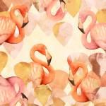 """Flamingo Mingle"" by cozamia"