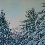 """WINTER PINES"" by katkuzma"