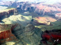 Grand Canyon Greening 0070