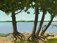 Trees by the Shore
