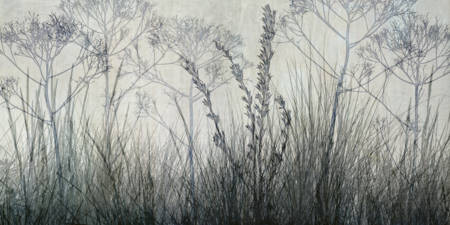 Wildflower Silhouettes Grey