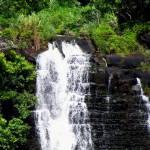 """""""Opeakaa Falls II"""" by MarksClickArt"""