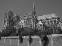 Cathédrale Notre-Dame de Paris (Black and White)